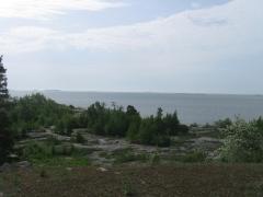 1.6 Harakka island and kaivopuisto (12)